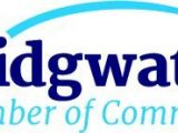 Bridgwater Chamber Voice Disappointment Over Parking Charges in Local Car Parks!