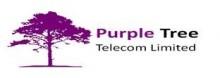 Purple Tree Communications Logo